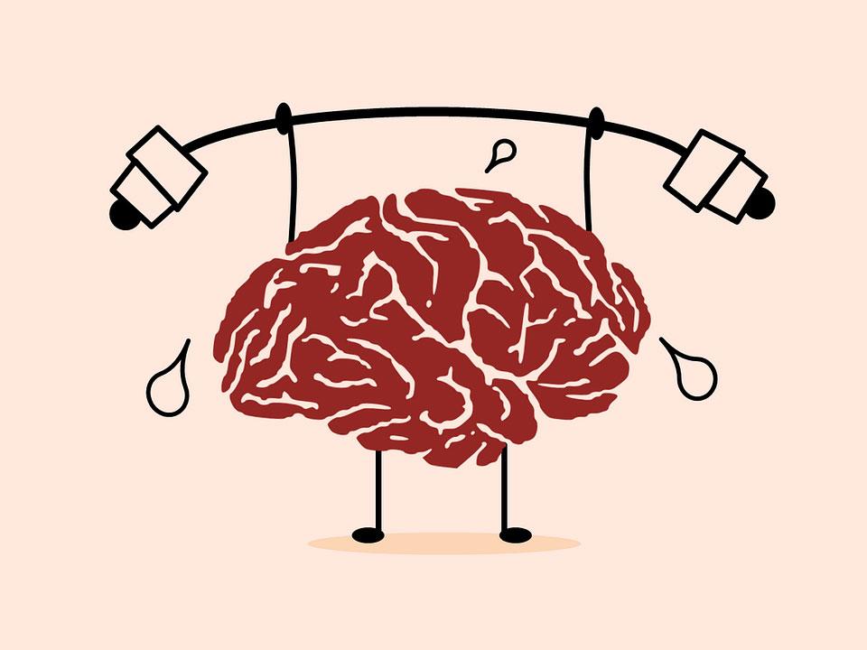 game-show-aplicatia-care-solicita-creierul-imbunatatind-capacitatea-de-memorare-si-motivatia-persoanelor-care-sufera-de-dementa