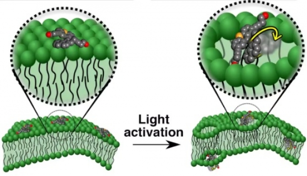 pas-urias-in-medicina-au-fost-inventate-nanomasinile-care-distrug-celulele-canceroase